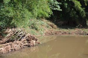 Em alguns locais é possível ver que o lixo foi retirado e o rio já ganha outro aspecto.