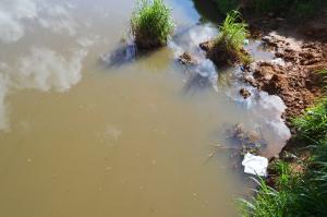 No trecho na Ponte da Aldeia, onde já foi limpo, não há grande acúmulo de lixo, mas é possível ver uma ou outra garrafa ou papel boiando, sinal de que já houve pessoas sujando o rio.