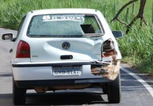 Gol seguia no sentido Manhuaçu a Ipanema e parou repentinamente ao se deparar com galho de uma árvore, causando o acidente.