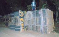 Caminhão carregado com bois tomba