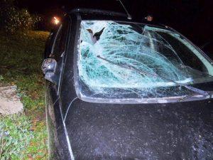 Corpo da vítima foi projetado no para-brisa do carro