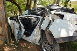 O carro saiu da pista, capotou e parou após bater em algumas árvores