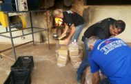165 tabletes de maconha incinerados em Espera Feliz