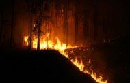 Incêndio florestal na Vila Boa Esperança é combatido por Bombeiros
