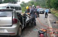 Árvore cai sobre veículo e mata pai e filha