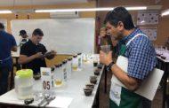 Cup of Excellence: 51 amostras das Matas de Minas disputam título de melhor café especial do Brasil