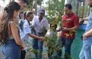 Distribuição de mudas marca Dia Mundial da Árvore