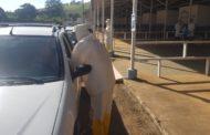 Vacinação acontece dentro de carros no Parque de Exposições de Manhuaçu