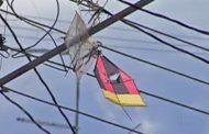 Acidentes com pipa na rede elétrica cresceram durante isolamento social