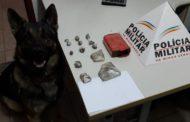 Cão de faro encontra maconha no bairro São Francisco de Assis