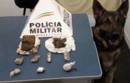 Durante aplicação do cão farejador, PM apreende drogas
