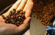 Exportações do agro mineiro crescem 9% Agronegócio