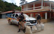 PM recupera sacas de café furtadas