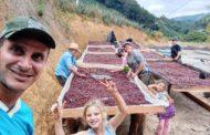 Família segue sonho de produzir café especial