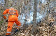 Fogo na mata: bombeiros combatem incêndio florestal no Bairro Bom Jardim