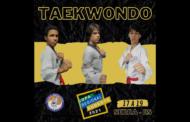 Atletas de Manhuaçu disputarão Copa Regional Sudeste de Taekwondo